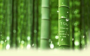 bamboo-on-the-engraved-word-romantic-love-theme-background-picture.jpg